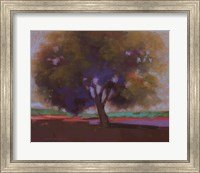 Framed Twilight Oak IV