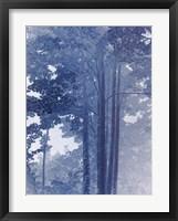 Framed Blue Lace II