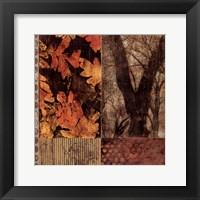 Framed Nature Series II