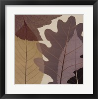 Framed 4 Leaves 1