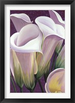 Framed Purple Lillies