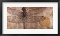 Dragonfly On Silver Framed Print