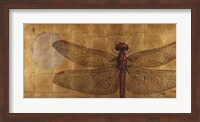 Framed Dragonfly On Gold
