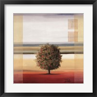Framed Apple Tree I