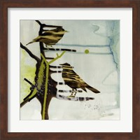 Framed Chit, Chat, Chirp