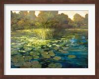 Framed Waterlilies