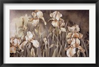Framed Field of Irises