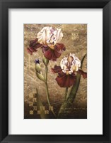 Framed Grand Irises