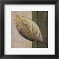 Framed Leaf Impression - Olive