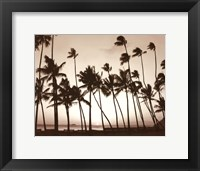 Framed Platinum Palms I
