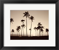 Framed Platinum Palms II
