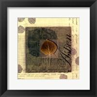 Framed Aspen