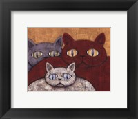 Sun Cats Framed Print