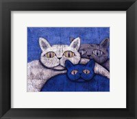 Ice Cats Framed Print