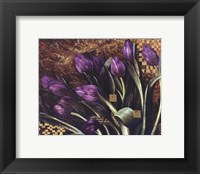 Regal Tulips Framed Print