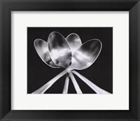 Framed Spoons