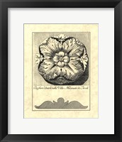 Vintage Rosette And Profile IV Framed Print