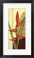 Framed Tropical Flower Panel I