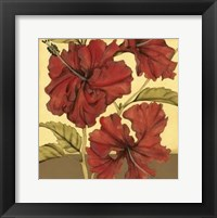 Framed Cropped Sophisticated Hibiscus I