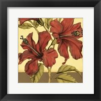 Framed Cropped Sophisticated Hibiscus II