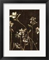 Framed Medium Blossom Nocturne I
