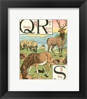 Framed Noah's Alphabet V