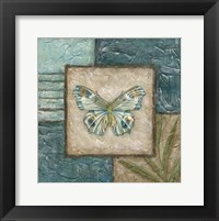 Framed Large Butterfly Montage II