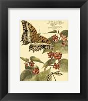 Framed Mini Whimsical Butterflies II