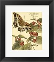 Mini Whimsical Butterflies II Framed Print