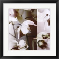 Framed Cymbidium Orchid I