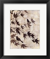 Maple Chorus I Framed Print