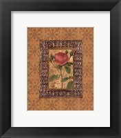 Framed Rose Illumination I