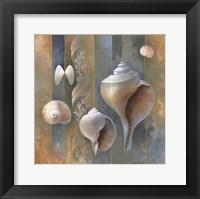 Framed Ocean Treasures II