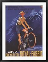 Framed Cycles Royal Fabric