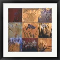 Iris Nine Patch II Framed Print