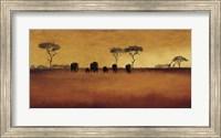 Framed Serengeti II