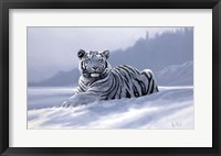 Framed Siberian Tiger