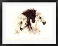 Framed Horses