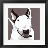 Framed Bull Terrier