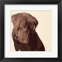 Framed Chocolate Labrador