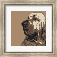Framed Bloodhound