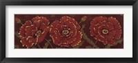 Venetian Poppies - Cs Framed Print
