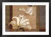 Lily Duet - Cs Framed Print