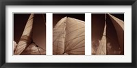 Framed Windward Sails Triptych