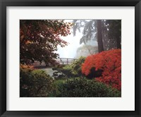 Framed Japanese Garden II