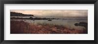 Island Shores I Framed Print