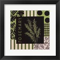Herbal Zest I Framed Print