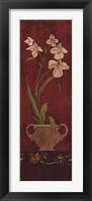 Framed Orchid Allure I