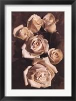 Framed Gathering Roses