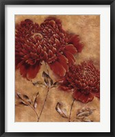Glorious Rosso I Framed Print